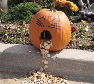 L'Halloween est un temps de réjouissance pour tous.