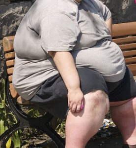 La canicule peut créer des malaises, particulièrement chez ceux qui côtoient des gros sales